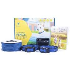 7 Best Electric Dog Fences Must Read Reviews For November 2020