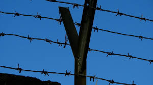 What To Know About Barbed Wire Fences Chainwire Fencing Specialist