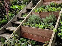 landscape design for sloped backyard