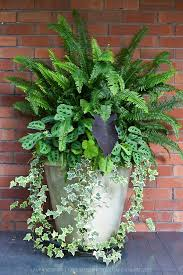 shade container best idea on potted pot