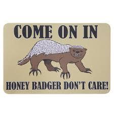 honey badger don t care mat what on