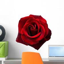 Red Rose Wall Decal Wallmonkeys Com