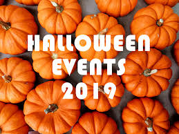 Image result for Halloween fun