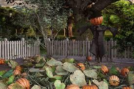 Dear Abby Pumpkins Present A Predicament For Pair Of Petulant Neighbors Newstimes