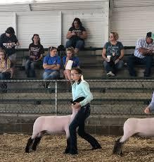 Hillsboro FFA members exhibit lambs - The Highland County Press