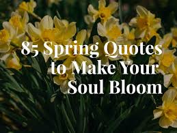 spring quotes to make your soul bloom