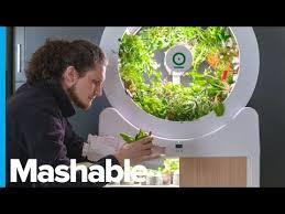 smart indoor garden grows 90 fruits and
