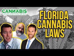 Florida Cannabis Laws - Dustin Robinson - Mr. Cannabis Law - Cannabis  Legalization News (CLN)