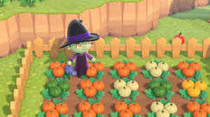 Animal Crossing New Horizons Pumpkins How To Grow The Most Pumpkins Imore