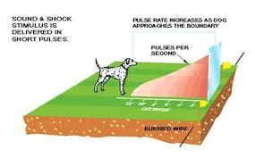Electric Pet Dog Fence Wireless Waterproof Training Boundary Collar W227 Ebay