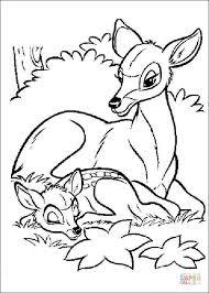 Bambi En Zin Moeder Kleurplaat Kleurplaat Kleurplaatje Nl