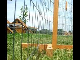 Portable Posts For Chicken Yard Garden Nice Simple And Elegant System To Moveable Fencing Chicken Fence Building A Chicken Coop Chickens Backyard