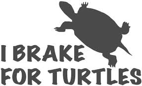 Amazon Com I Brake For Turtles 10 Inch Dark Gray Indoor Outdoor Vinyl Decal Automotive