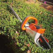 ArtStation - Best Cordless Hedge Trimmer, Lorie Smith