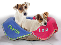 adorable personalised dog gifts