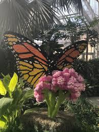 lauritzen gardens omaha s botanical