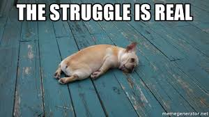 The struggle is real - Passed out dog | Meme Generator