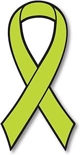 Amazon Com Lime Lymphoma Cancer Awareness Ribbon Car Magnet Decal Heavy Duty Waterproof Automotive