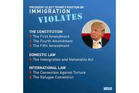 Donald Trump: A One-Man Constitutional ...