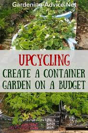 create a vegetable container garden on
