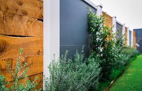 boundary wall ideas