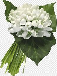 يوم المرأة العالمي 8 مارس عطلة Ansichtkaart باقة من الزهور باقة