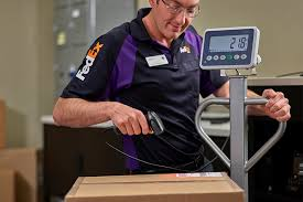 fedex overnight shipping for next day