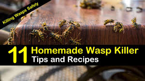killing wasps safely 11 homemade wasp