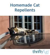 homemade cat repellents thriftyfun