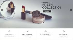 cosmetic wordpress theme
