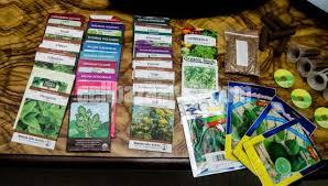 indoor garden with gourmet herb seed