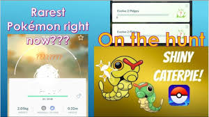 Shiny caterpie hunting and the RAREST pokemon in pokemon go right ...