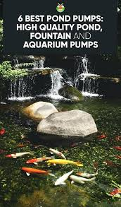 fish pond water pump blueshifttech co