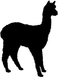 Alpaca Silhouette Car Or Truck Window Decal Sticker Rad Dezigns