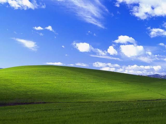 "Inilah Fotografer dari Wallpaper ""Bliss"" di Windows XP, Agan Pasti Hafal Gambarnya!"