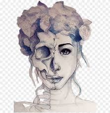 half human half skull png image with