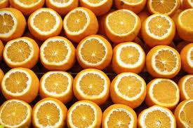 florida oranges make an excellent gift