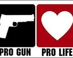 Pro Gun 2a Vinyl Decal Car Truck Sticker Bumper Window Flag Texas Guns Obama