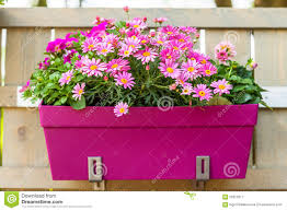 Flower Pot Hanging On Wooden Fence Stock Image Image Of Flower Home 56322317