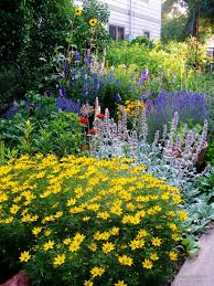 flower bed ideas for full sun with