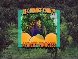 rex orange county desktop wallpapers