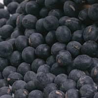 black soybeans calories 405cal 140g
