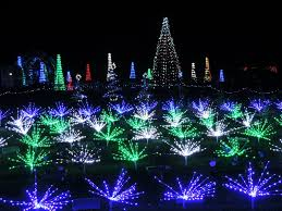 lights up missouri botanical garden