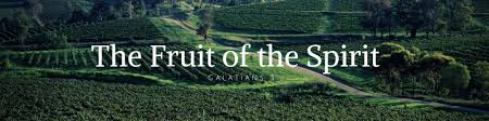 """Image result for AN INTRODUCTION TO THE FRUITS OF THE SPIRIT"""""""