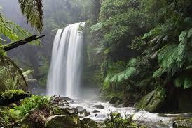kata kata tentang alam gunung pantai hutan lengkap