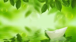 خلفيات للتصميم 2019 خلفيات فوتوشوب للتصميم Hd Green Leaf Wallpaper