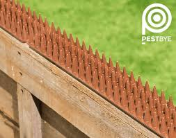 Fence And Wall Spikes Brown Cat Repellent Security Spikes By Pestbye 0 60
