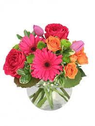 zengel flowers