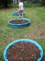 raised bed gardens in 30 minutes