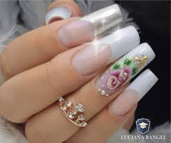Seja uma Nail Design Profissional de Sucesso - Luciana Rangel